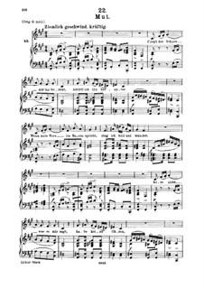 No.22 Mut (Courage): para voz media e piano by Franz Schubert