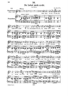 Du liebst mich nicht (You do Not Love Me), D.756 Op.59 No.1: para voz media e piano by Franz Schubert