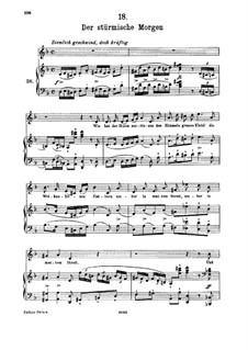 No.18 Der stürmische Morgen (The Stormy Morning): para voz alta e piano by Franz Schubert