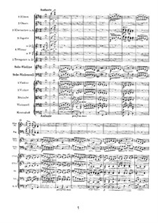 Concerto for Violin, Cello and Orchestra in A Minor, Op.102: movimento II by Johannes Brahms