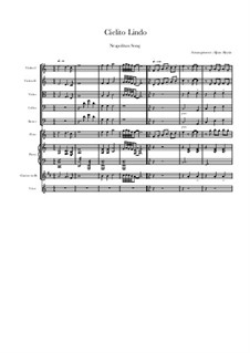 Cielito Lindo: For solo and chamber orchestra by folklore
