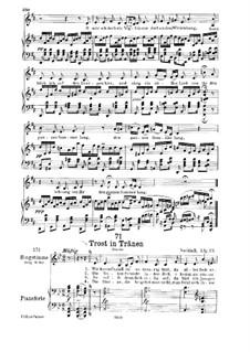 Trost in Tränen (Consolation in Tears), D.120: Partitura piano-vocal by Franz Schubert