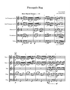 Pineapple Rag: Para quinteto de metais by Scott Joplin
