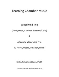 Learning Chamber Music: Woodwind trio by Michele Schottenbauer