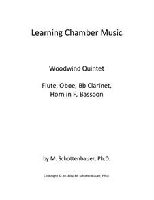 Learning Chamber Music: quinteto de sopro by Michele Schottenbauer