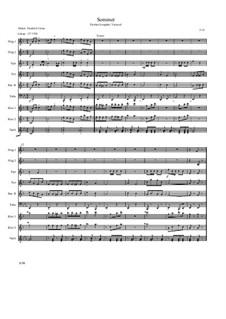 Galopp: Sommer: Galopp: Sommer by Friedrich Gross