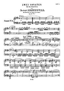 Sonata for Piano No.9, Op.14 No.1: para um único musico (Editado por H. Bulow) by Ludwig van Beethoven