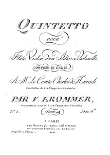 Quintet for Flute and Strings in D Minor, Op.94 No.3: parte flauta by Franz Krommer