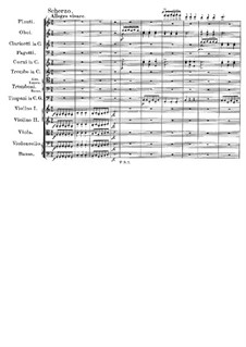 Symphony No.9 in C Major 'The Great', D.944: movimento III by Franz Schubert