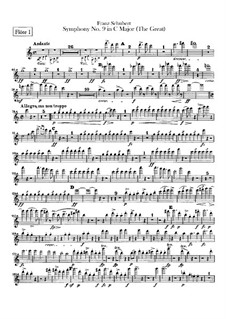 Symphony No.9 in C Major 'The Great', D.944: parte de flautas by Franz Schubert