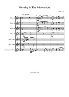 Morning In The Adirondacks - for flute choir: partitura completa by Judith Katz