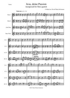 Jesu, deine Passion: para quarteto de flauta by Johann Sebastian Bach