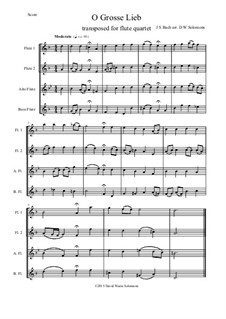 O Grosse Lieb: para quarteto de flauta by Johann Sebastian Bach