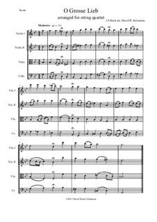 O Grosse Lieb: para quartetos de cordas by Johann Sebastian Bach
