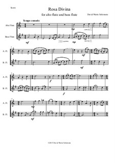 Rosa Divina: For alto flute and bass flute by David W Solomons