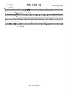 8nde Juni 793: corneta parte I by Alexander Nævdal