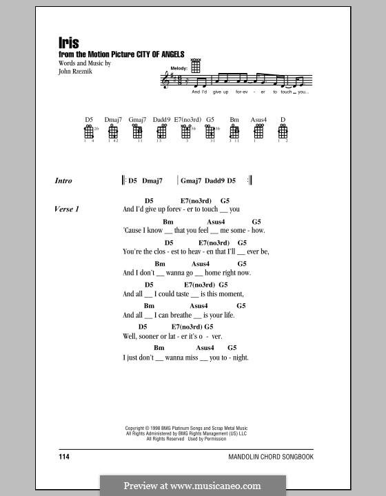 Iris (Goo Goo Dolls): Para vocais e piano (ou Guitarra) by John Rzeznik