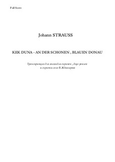 On the Beautiful Blue Danube, Op.314: For violins and two pianos, Op.44 by Johann Strauss (Sohn)