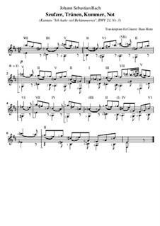 Ich hatte viel Bekümmernis, BWV 21: Nr.3 Seufzer, Tränen, Kummer, Not, für Gitarre by Johann Sebastian Bach