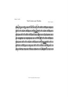 Viel Lärm um Nichts, Op.90: Viel Lärm um Nichts by Dieter Angerer