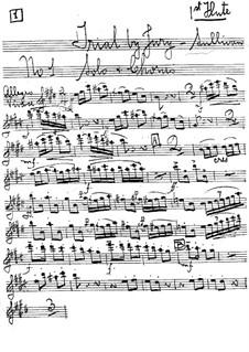 Trial by Jury: parte de flautas by Arthur Seymour Sullivan
