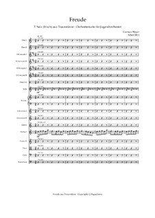 Dream Dances - Orchestral Suite - C.PiqueDame: Movimento II Prazer (Irlandês) – score, Op.040421 by Carmen Hoyer