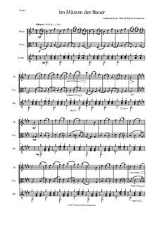 Five German Folk Songs: Im Märzen der Bauer, for flute, viola and guitar by folklore
