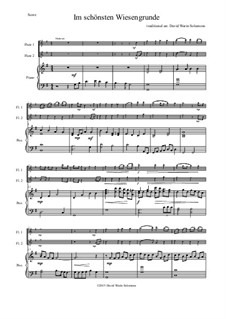 Five German Folk Songs: Im schönsten Wiesengrunde, for two flutes and piano by folklore