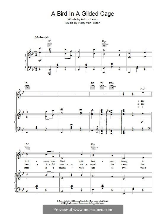 A Bird in a Gilded Cage: Para vocais e piano (ou Guitarra) by Harry von Tilzer