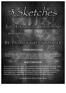 3 Sketches for Woodwind Ensemble: Movement 3 - On Lake Wilson by Patrick Glenn Harper