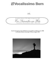 Ein Sträußchen am Hute: Klavierauszug, GCA16 by Friedrich Silcher