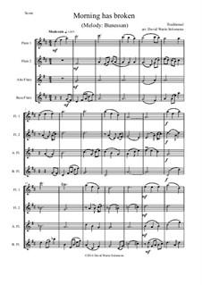 Morning Has Broken: para quarteto de flauta by folklore