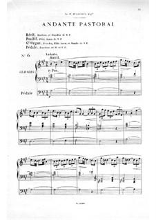 Twelve Pieces-Novellas for Organ, Op.59: No.6 Andante pastoral by Théodore Salomé