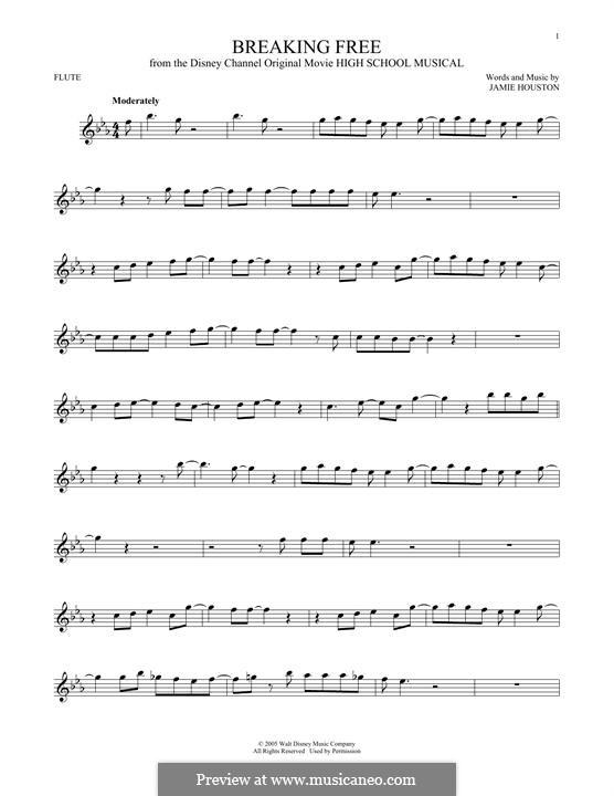 Breaking Free (from High School Musical): para flauta by Jamie Houston