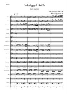 Joy march, Op.74: Joy march by Nino Janjgava