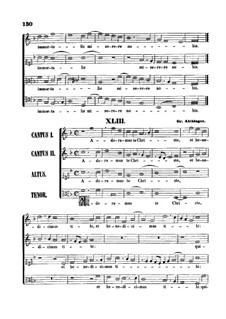 Adoramus te Christe: partituras de vocais by Gregor Aichinger