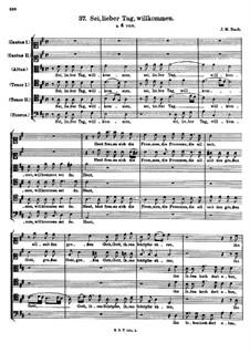 Sei, lieber Tag, willkommen: Sei, lieber Tag, willkommen by Johann Michael Bach