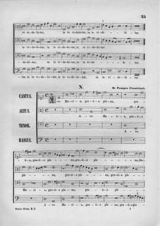 Ave Maria: Ave Maria by Pompeo Cannicciari
