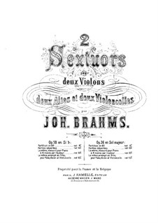 String Sextet No.2 in G Major, Op.36: violino parte I by Johannes Brahms