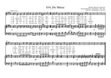 Die Mäuse: Die Mäuse by Ernst Richter