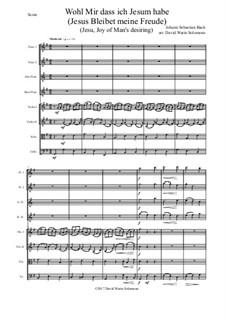Jesus bleibet: For flute quartet and strings by Johann Sebastian Bach