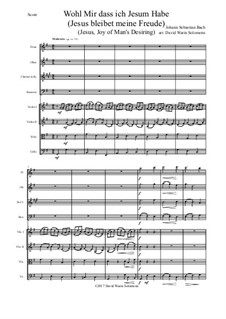 Jesus bleibet: For wind quartet and strings by Johann Sebastian Bach