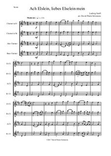 Ach Elslein, liebes Elselein mein: For clarinet quartet (E flat, B flat, Alto, Bass) by Ludwig Senfl