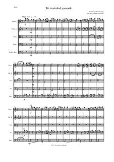 Tri martolod yaouank (Three young sailors): para cordas by folklore