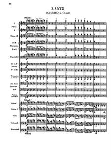 Symphony No.1 in C Minor, WAB 101: movimento III by Anton Bruckner
