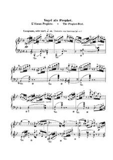Waldscenen (Forest Scenes): No.7 Vogel als Prophet (The Bird as Prophet) by Robert Schumann
