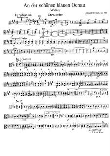 On the Beautiful Blue Danube, Op.314: parte viola by Johann Strauss (Sohn)