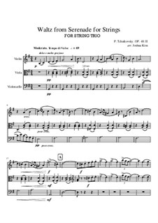 Serenade for String Orchestra, TH 48 Op.48: Movement II (Waltz), for string trio by Pyotr Tchaikovsky