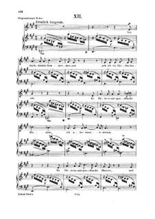No.12 On a Sunny Summer Morning: Para vocais e piano by Robert Schumann