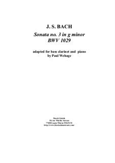 Sonata for Viola da Gamba and Harpsichord No.3 in G Minor, BWV 1029: Arrangement for bass clarinet and piano by Johann Sebastian Bach